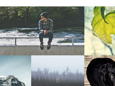 12 of the best web design themes from 2014