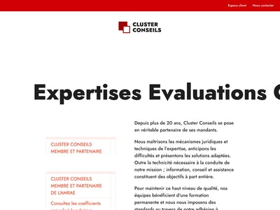 Cluster Conseils